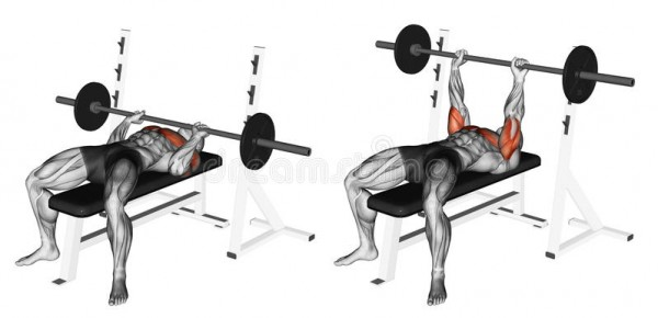 bench press example